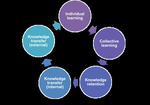 organisational learning