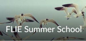 FLIE Summer School unit on Brightspace