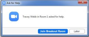 Zoom ask for help popup message