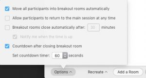 Zoom breakout room options