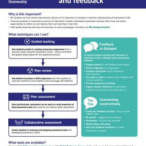 Understanding Assessment and Feedback