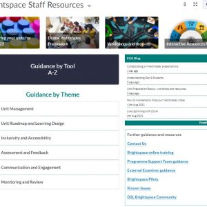 Updated Brightspace Staff Resources area
