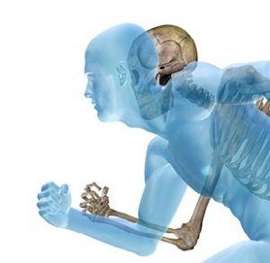 OrthoPeadic16-041234_300x300