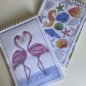 2 colouring books